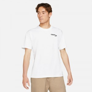 Nike SB Skate T-Shirt DJ1222-100