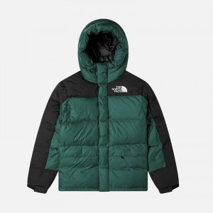 The North Face Himalayan Down Parka NF0A4QYXHBS1