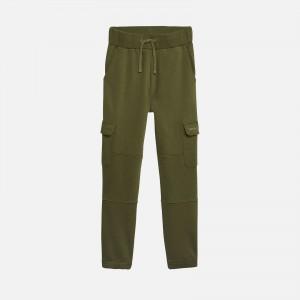 Tommy Jeans Reg Utility Sweatpant DW0DW10348L81